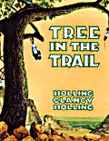 Tree trail.jpg